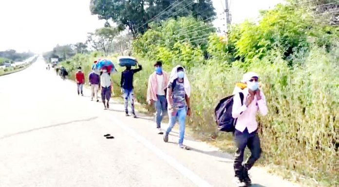 Migrant labourers marching on foot towards Lakhanpur to leave for their home States. -Excelsior/Pardeep