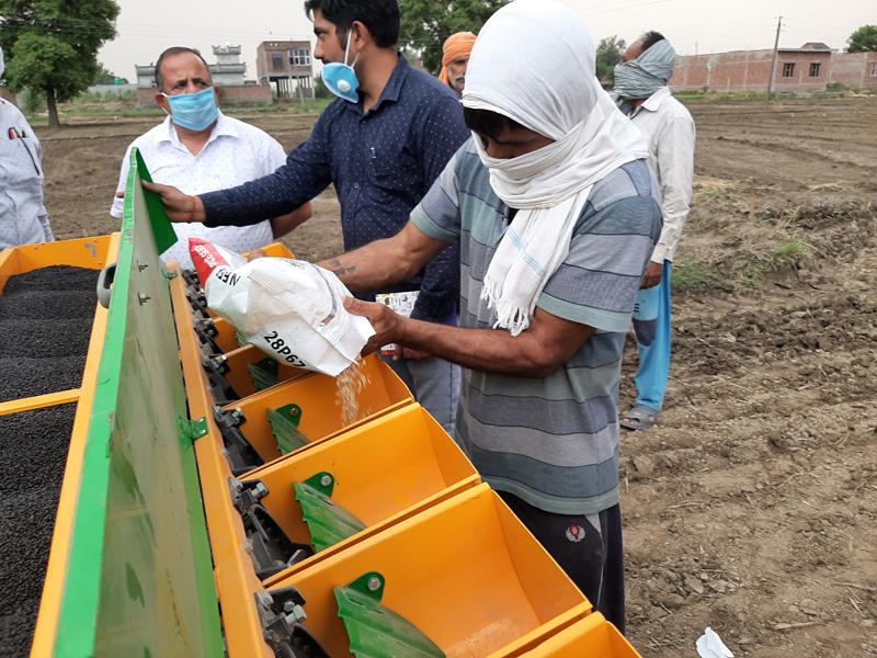 First time DSR Culture adopted in Kathua district for sowing paddy seed on Tuesday. -Excelsior/Pardeep