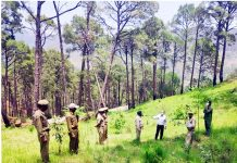 Principal Chief Conservator of Forests Dr. Mohit Gera during visit to Udhampur on Wednesday.