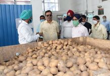Principal Secretary Agriculture Navin Choudhary during visit to a processing unit on Thursday.