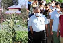 Principal Secretary APD, Navin Kumar Choudhary during visit to Vegetable Cluster in Baramulla on Wednesday.