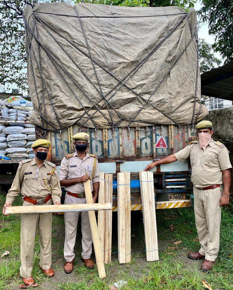 Poplar wood clefts seized by Forest officials at Lakhanpur on Saturday. —Excelsior/Madan