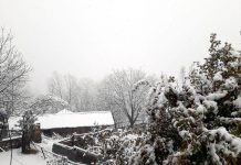 A panoramic view of snow laden trees in Chassana area of Reasi district.