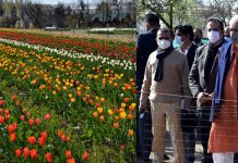 LG J&K Manoj Sinha & Governor of Kerala Arif Mohammad Khan during inauguration of Tulip festival on Saturday.