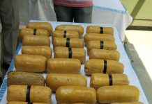 Heroin packets seized on border in Hiranagar sector on Wednesday. — Excelsior/Nischant