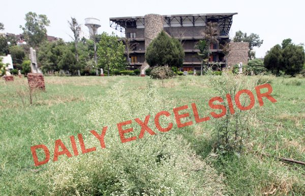 Wild growth around sculptures at the lawn outside Abhinav Theatre in Jammu. —Excelsior/Rakesh